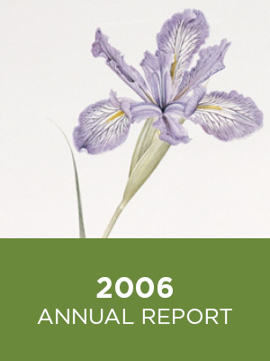 CFCS Annual Report 2006