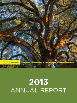 CFCS Annual Report 2013