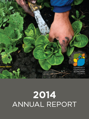 CFCS Annual Report 2014