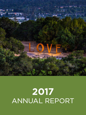 CFCS Annual Report 2017