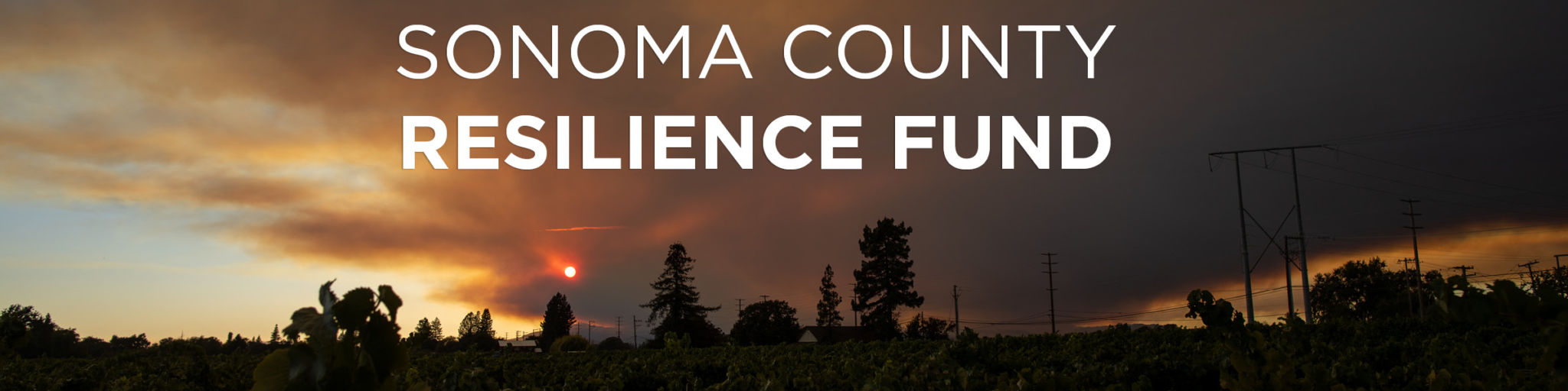 The Sonoma County Resilience Fund